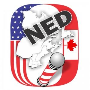 logo_NED
