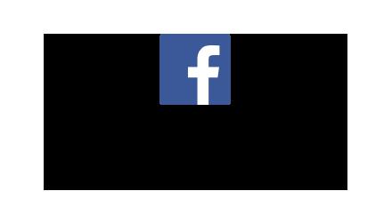 2016AnnualReport-stats-socialmedia-facebook